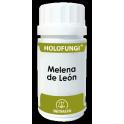 Holofungi Melena de León -...