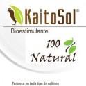 KaitoSol