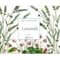 Saquito perfumado Lavanda -...